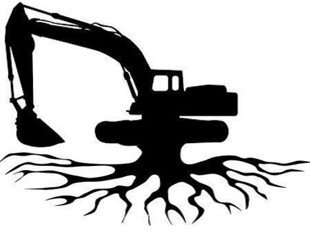 Deep Roots Excavation